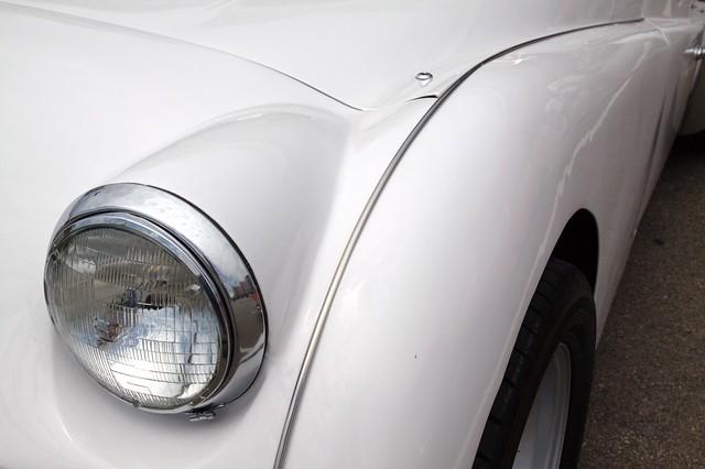 White Triumph2