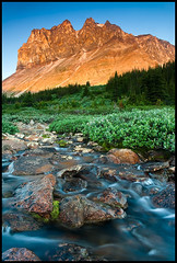 Tekarra Mountain (Mike Isaak) Tags: camera travel flowers blue camping summer orange mountain holiday canada mountains flower colour green art nature water skyline creek forest sunrise river landscape flow photography nikon rocks jasper natural hiking fineart trails rocky naturallight canadian foliage trail alberta rockymountains filters polarizer fineartphotography canadianrockies travelphotography fineartprint tekarra d300s mikeisaak
