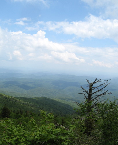 Blue Ridge Mountains from Grandfather Mountain