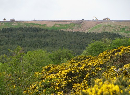 Landfill Skyline on the Cavehill