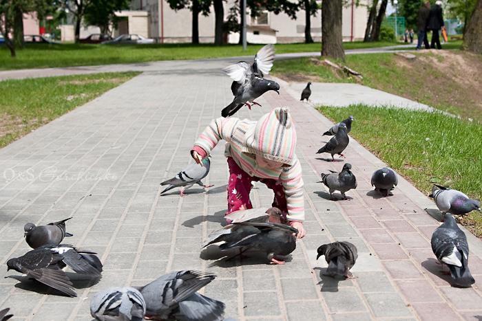 Девочки и птицы