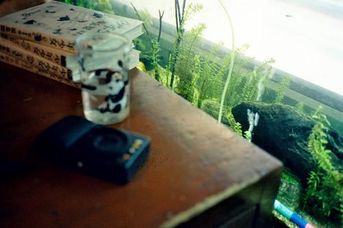 OLYMPUS mju2 x Kodak MAX400
