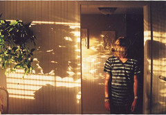 (amnda adam) Tags: light plants film window canon hair rebel evening brother stripes eosg