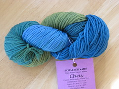 Schaefer Yarn Chris