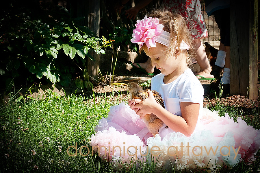 little girl with tutu and litle chicken in hands