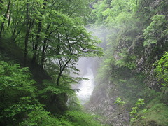 River leaving the kocjan Caves, Slovenia (sblinn) Tags: mist mountain rock fog forest river slovenia cave slovenija jame jama reka skocjan kocjan