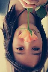 bocca di fiore (Levan*) Tags: io giallo fiore luce francesco arancione tulipano levan