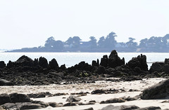 Morbihan (jmboyer) Tags: voyage travel mer france photography photo flickr picture bretagne viajes lonely morbihan couleur gettyimages travelphotography googleimage go photoflickr photosflickr canonfrance photosyahoo imagesgoogle jmboyer photogo nationalgeographie photosgoogleearth