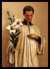 St. Aloysius Gonzaga (*Jeff*) Tags: minnesota statue lilies aloysius gonzaga mankato