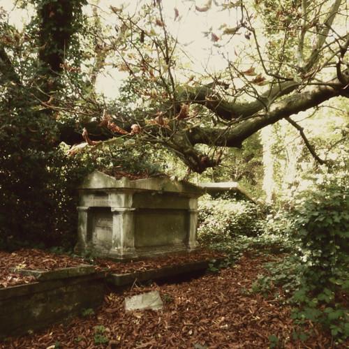 Nunhead Cemetery 7~ gravestones