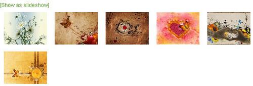 nextgen-gallery-style-04