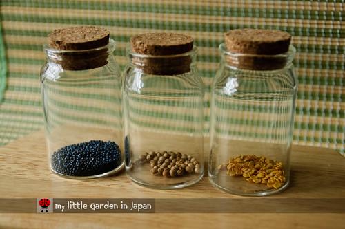 my-seeds-3