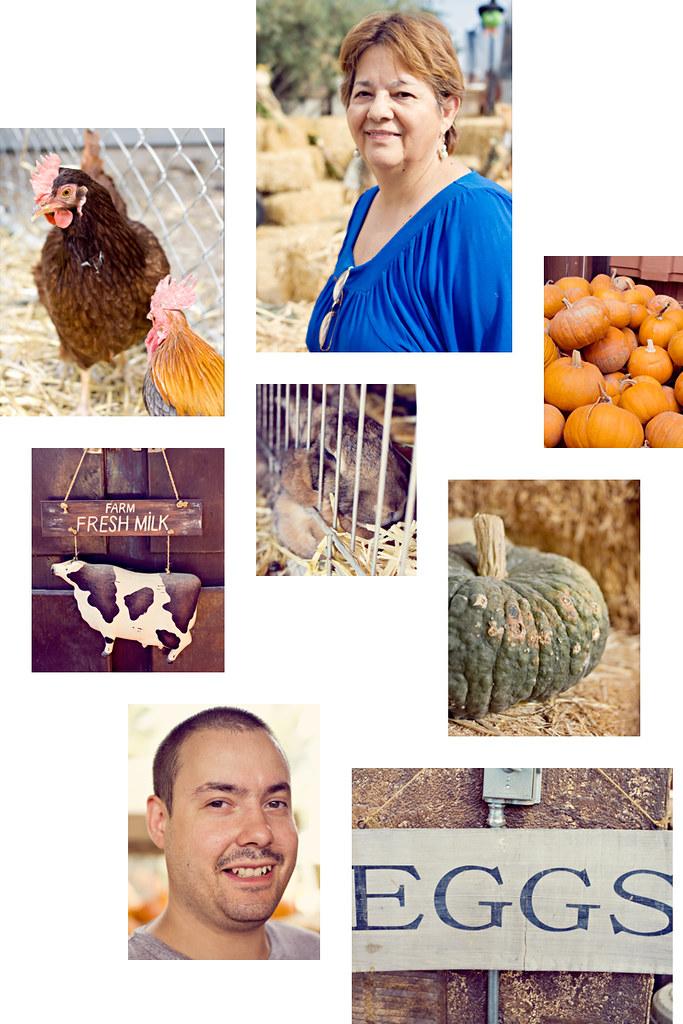 Pumpkin-Festival