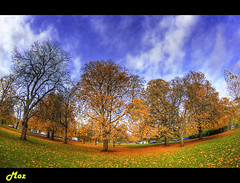 Hyde Park Autumn (Muzammil (Moz)) Tags: uk autumn panorama london fall fisheye hydepark moz londonparks novemberinlondon londontouristattractions afraaz