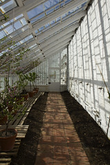 (Josieroo13) Tags: audleyendhouse eh englishheritage statelyhome uk england essex architecture conservatory greenhouse shadows pattern