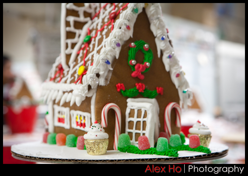 4209543453 95c6777bc6 o Gingerbread House