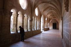 Abbaye de Valmagne 3