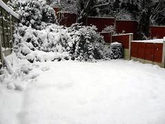 Snow garden (stevencunio.com) Tags: trees white snow fence garden compostbin