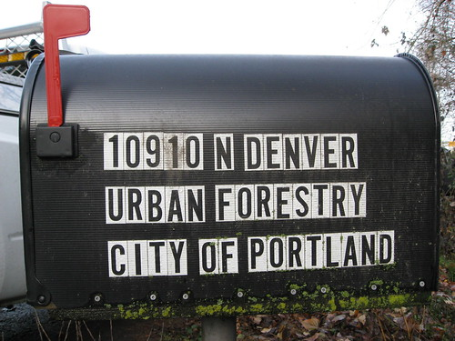 Portland City Forester Updates Budget Cut Info Friends Of Trees