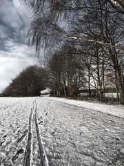 Snowy scene (Lowthy75) Tags: park snow landscape e3 colwick leadin 918mm