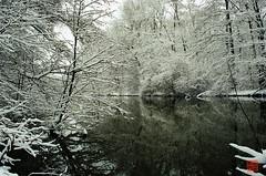 Silber-Spree (sring77) Tags: schnee winter film analog weihnachten spiegel spree brandenburg cottbus silber canon500n flus