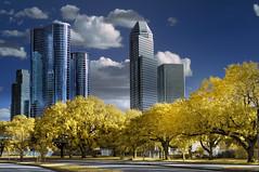 Allen Parkway area, Houston in Goldie IR (troubledog) Tags: blue yellow ir nikon day texas cloudy d70s houston allenparkway enron nx2 colorphotoaward top20texas 100commentgroup mygearandmepremium mygearandmebronze mygearandmesilver mygearandmegold