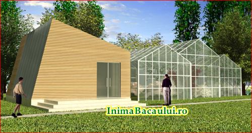 InimaBacaului.ro Proiect reabilitare insula de agrement Bacau  (4)