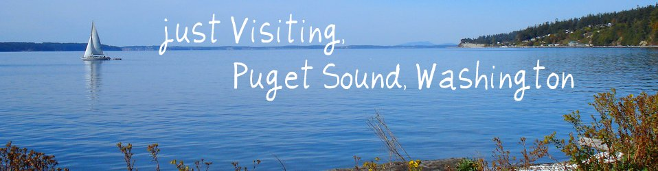 Just Visiting - Puget Sound, WA