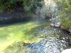Sentier du ruisseau de San Petru : vasque sur le ruisseau pour baignade