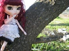 Megumi - Pullip Veritas