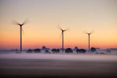 Misty Morning (Odin75) Tags: morning mist sunrise sweden sverige hdr blekinge slvesborg nikond60 18105vr