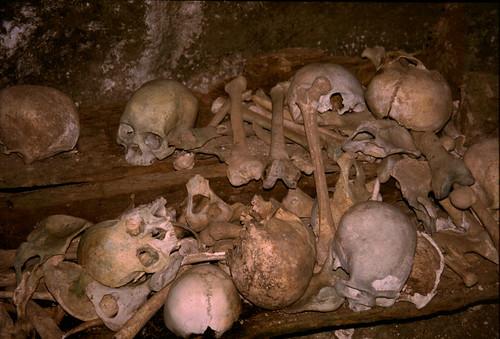 "Cimitero dei Tana Toraja [1] • <a style=""font-size:0.8em;"" href=""http://www.flickr.com/photos/49106436@N00/4329684113/"" target=""_blank"">View on Flickr</a>"