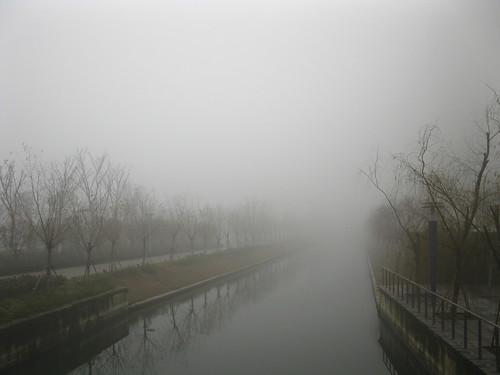 乱贴图:没呼也来,挥之不去的大雾,笼罩着一切,让我看不清到底通向什么地方