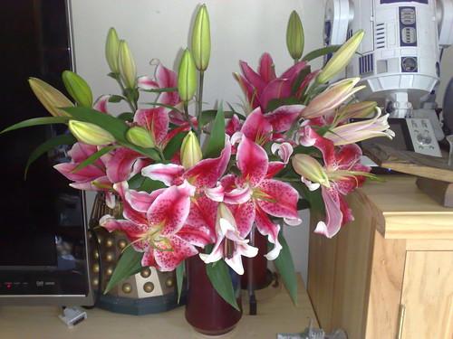 Surprise flowers!