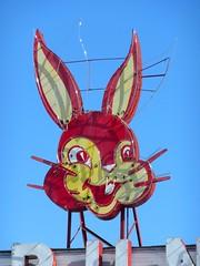 Anna, IL Bunny Bread face (army.arch) Tags: anna bunny sign bread illinois neon critter il