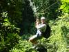 Bak a bush P3210073