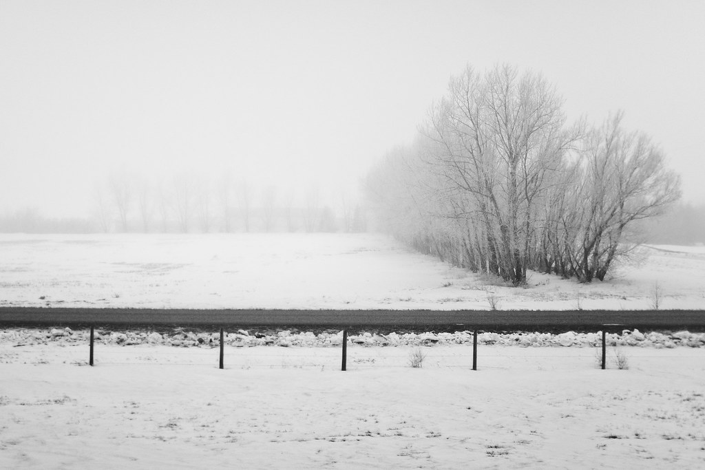 Colorless Winter