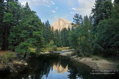 Mirrored in the Merced - Half Dome Yosemite California (Darvin Atkeson) Tags: california park usa reflection america forest river us nevada merced sierra national yosemite dome half halfdome range yosemitevalley darvin  5photosaday  atkeson  darv   liquidmoonlightcom flickrsportal