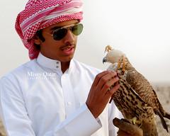 (Missy | Qatar) Tags: desert hunting bin falcon fahad qatar  abdulaziz  alkhater