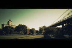 [The Avalon Serie]  (- Loomax -) Tags: park bridge trees urban newyork sunshine brooklyn book daylight glow manhattanbridge cinematic frontpage warmcolors cinemascope theavalonserie