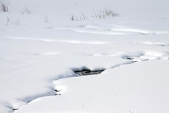 The Protected River (Kathy~) Tags: cruise winter snow creek river utah eden fc powdermt herowinner