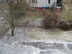 winter 2010 02 26