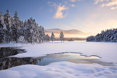 And Then There Was Light - Loch An Eilean, Cairngorm, Scotland (cedric_g) Tags: trees winter light white mountain lake snow reflection forest landscape scotland frozen nikon magic beam pines loch sunbeam winterwonderland cairngorm lochaneilean nikond3