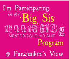 Big Sis, Little Blog Program