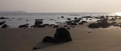 Stones (anastasiazhe) Tags: ocean trip travel sea india nature asia goa kitesurfing 2010