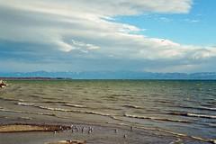 Bodensee bei Sturm Xynthia