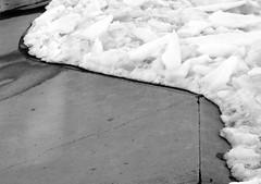 skatepark winter yin yang (dmixo6) Tags: winter canada nature weather spring melt muskoka thaw sapsucker bipolar dugg dmixo6