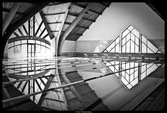Swimming Pool Reflection