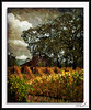 Slusser Rd  Barn (A Work of Mark) Tags: barn photoshop vineyard oak country textures layers figment rual thepyramid theworldwelivein thebestgallery finestimages trolledproud aplaceforgreatphotographers