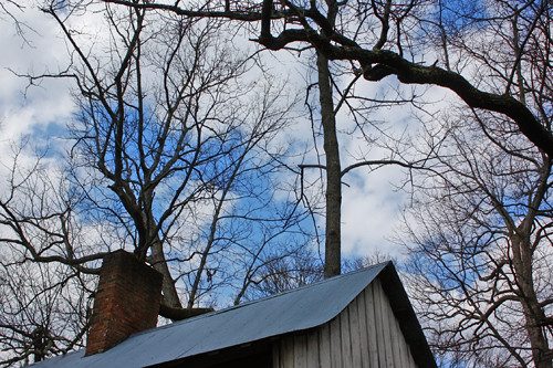 tin-roof
